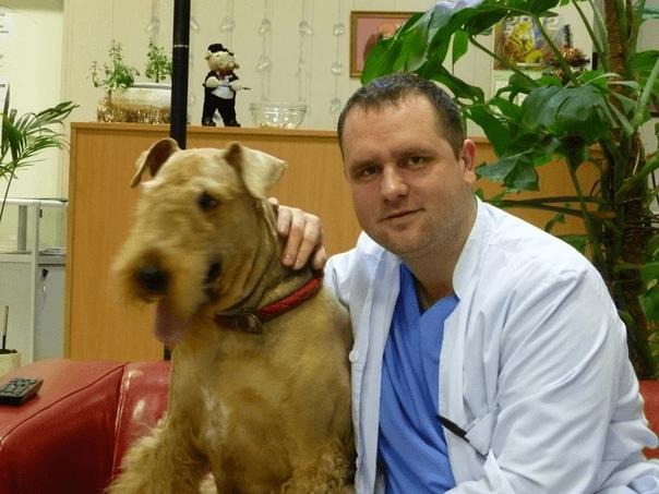 Ветеринарный врач - дерматолог в Юго-Западном Административном округе Москвы в районе Ясенево - Юрасов Александр Валерьевич